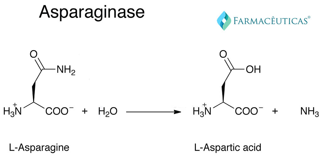 reaction-aspariginase