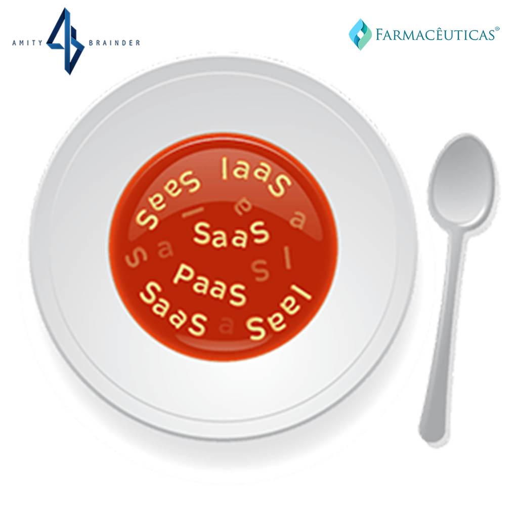 saas-laas-soup